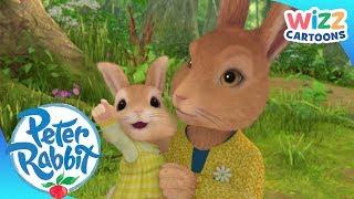 Peter Rabbit | Mother's Love | Action-Packed Adventures | Wizz Cartoons
