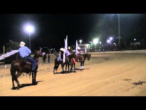 Gladstone Show up on Horses.m2ts