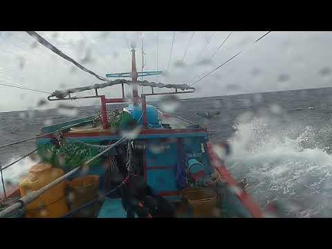Xxx Mp4 Badai Di Laut Selatan 3gp Sex
