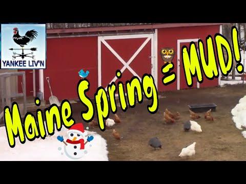 Maine Spring Brings Mud Season