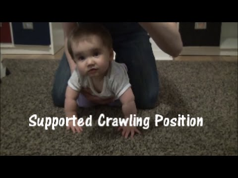 Supported Crawling Exercise