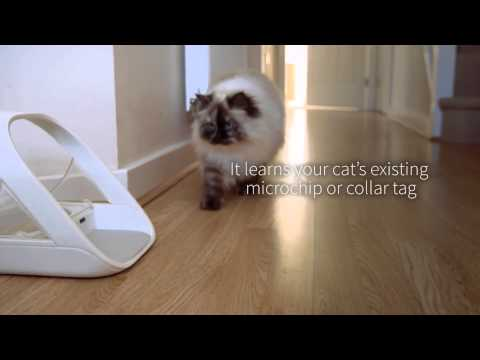 Control Your Pets Diets - The SureFeed Microchip Pet Feeder