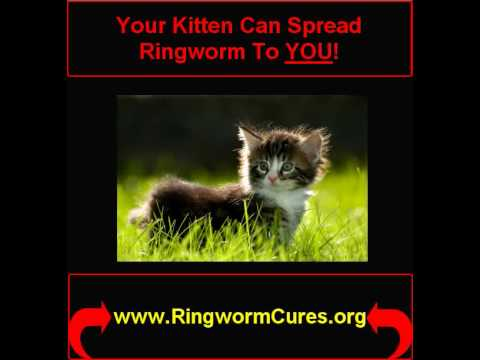How To Get Rid Of Ringworm In Humans...