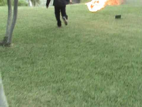 Ryan and Patrick Removing Bees with Fire
