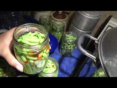 Dill pickled green beans
