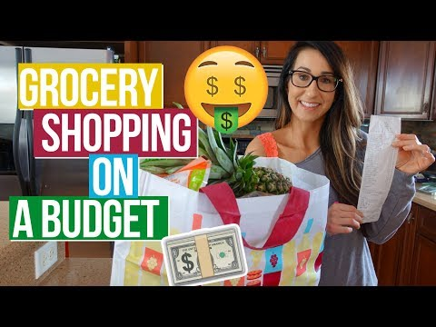 BUDGET Grocery Haul | Aldi