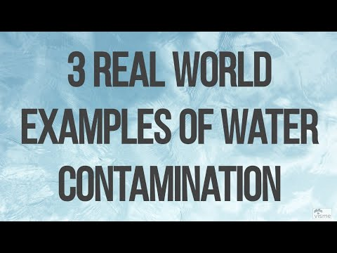 3 Real World Examples of Water Contamination