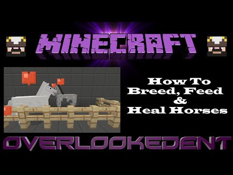 How To Breed, Feed & Heal Horses - Minecraft Xbox/Playstation - [Tutorial]
