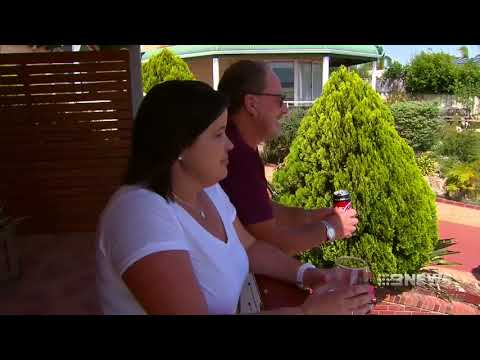 Peel health | 9 News Perth