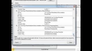 elcomsoft password breaker 6.45 with key