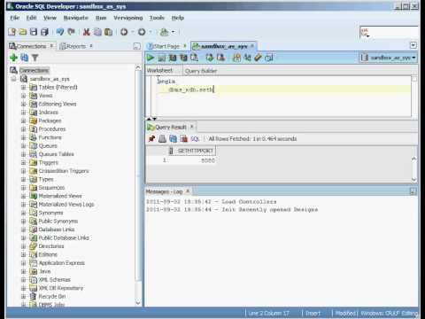 Oracle Application Express URLs