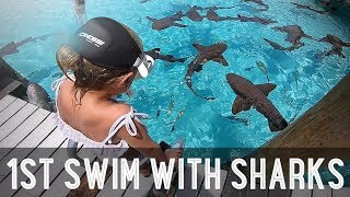 Kids Swimming with Sharks!! /// WEEK 107 : Bahamas
