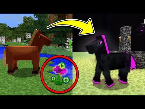 How to Spawn the Secret ENDER HORSE in Minecraft Pocket Edition!