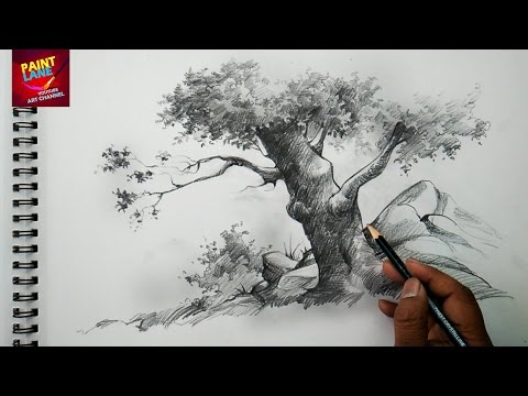 Basic Sketch and Shade A Tree With Pencil | Pencil Art