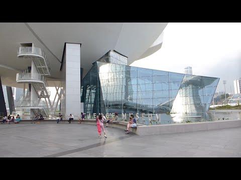 Singapore - ArtScience Museum at Marina Bay Sands HD (2015)