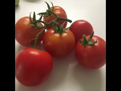Tomato Puree without preservatives/How to blanch Tomato