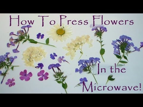 how to press flowers in a microwave