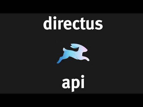 Using the Directus API