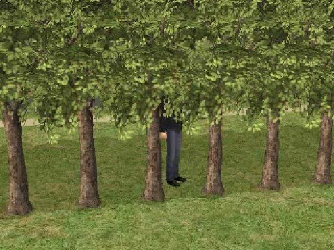 How to Become a Plantsim on the Sims 2