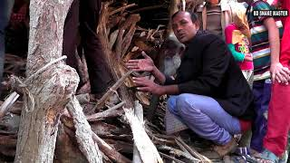 পটুয়াখালী রাজ্জাক বিশ্বাস এর সাপ ধরার লাইভ ভিডিও নতুন পর্ব - ২৭ | এক্সক্লুসিভ | BD Snake Master |HD