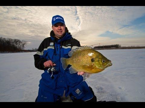 Panfish at Late Ice