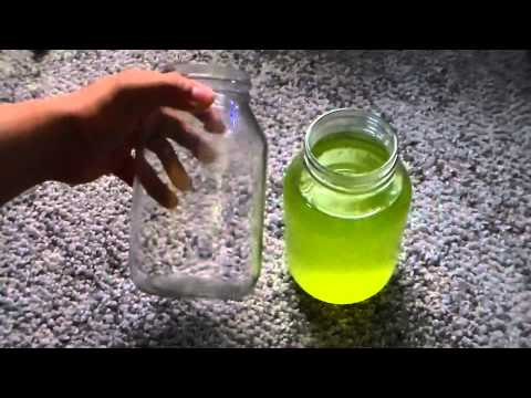 How To: Culture Green Water