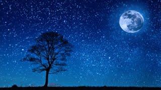 8 Hour Deep Sleep Music ~ Relaxing Ambient Sleep ~ Delta Brainwaves ( Zen, Meditation)