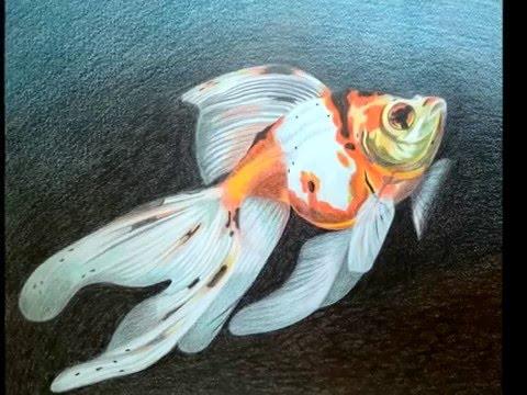 realistic Animals, painted by KEWA