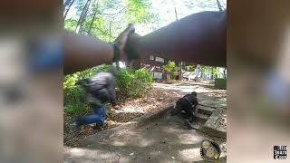 Video shows officer pleading with man before fatal shooting