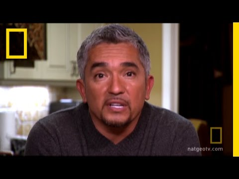 Cesar's House Rules | Dog Whisperer