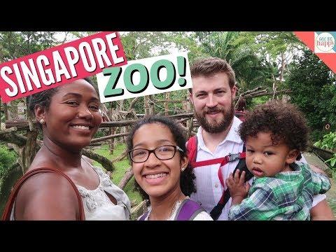 Singapore Zoo - Family Travel Vlog - Traveling with Kids - Singapore #10