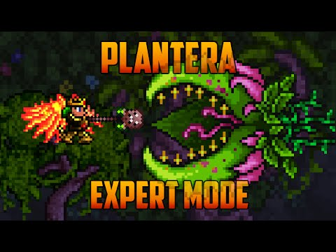Terraria 1.3 - Plantera, Expert Mode Boss Battle