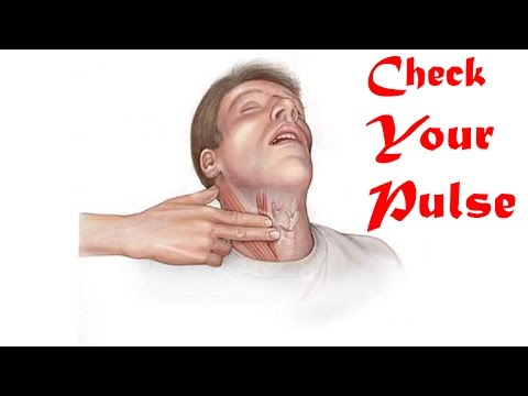 11 Steps Check Your Pulse | How to Check Your Pulse | Finding Your Pulse