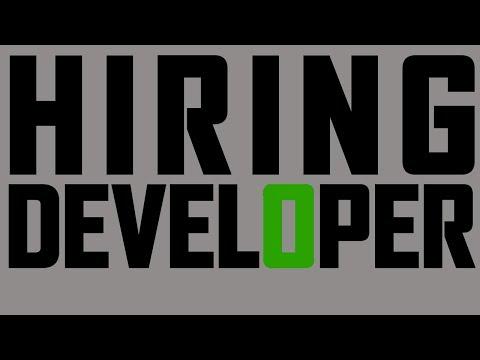 Brand New Minecraft Server | Needs Developer