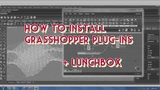 Lunchbox grasshopper Videos - 9tube tv