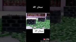 Best islamic bayan status videos