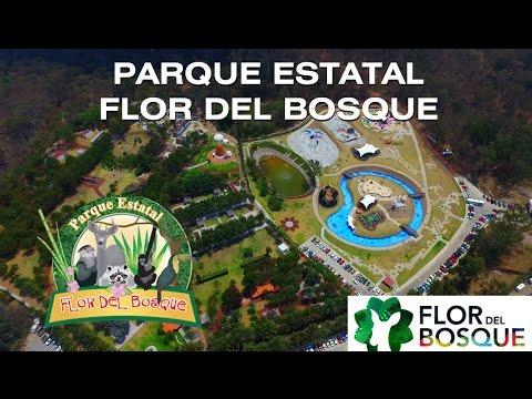 Parque Estatal Flor del Bosque - Puebla