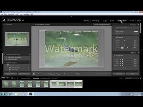 How to Delete Lightroom Watermark