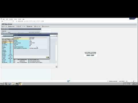 SAP Admin - Check Component Version