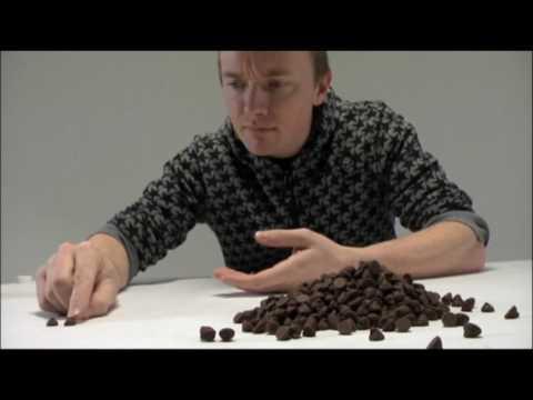 Michaelangelo's David w/Chocolate Chips