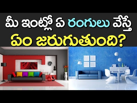 House Colours | Colours of Your WALLS at Home | Which Color to Paint? | VTube Telugu