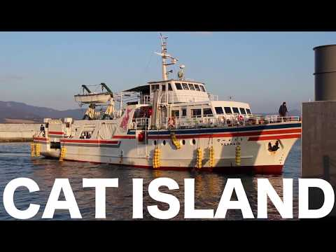 #1   Cat Island in Miyagi
