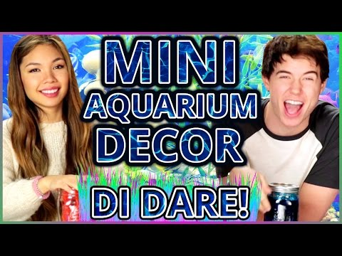 DIY Mason Jar Aquarium?!   Di-Dare w/ Tiffany Ma & Alex Reininga