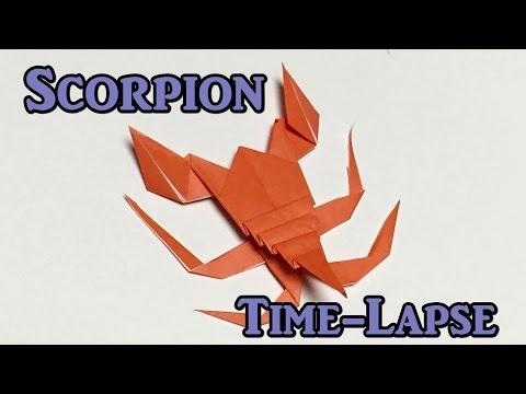 Origami paper scorpion time-lapse