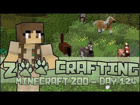Newborn Foals in the Meadow of Horses!! 🐘 Zoo Crafting: Season 2 - Episode #124