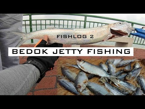 Bedok Jetty Fishing: How to make TUYO