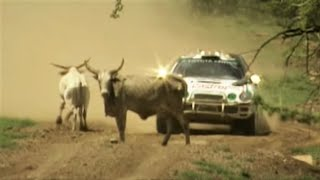 WRC TRIBUTE 1995-1996: Maximum Attack, On the Limit, Crashes & Best Moments