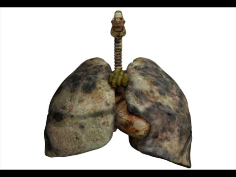 How to Detox Smokers Lungs - Lung Cleanse For Smokers