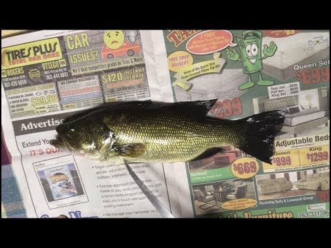 How to fillet a Largemouth Bass easy with no bones.
