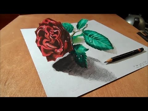 How to Draw Rose - Drawing 3D Rose on Paper  - Trick Art Illusion